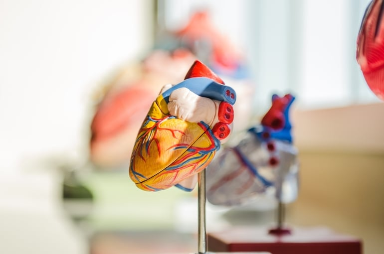 Herzinsuffizienz Symptome können verschieden sein
